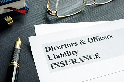 Directors and Officers liability form